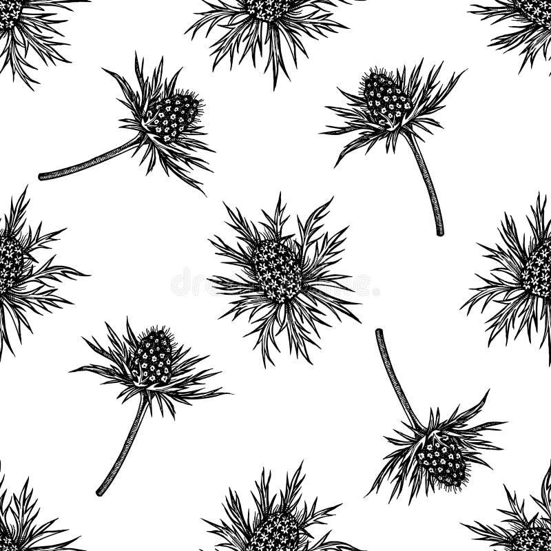 Naadloos patroon met zwart-witte blauwe eryngo royalty-vrije illustratie