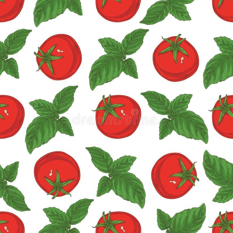 Naadloos patroon Tomaten en basilicum vector illustratie