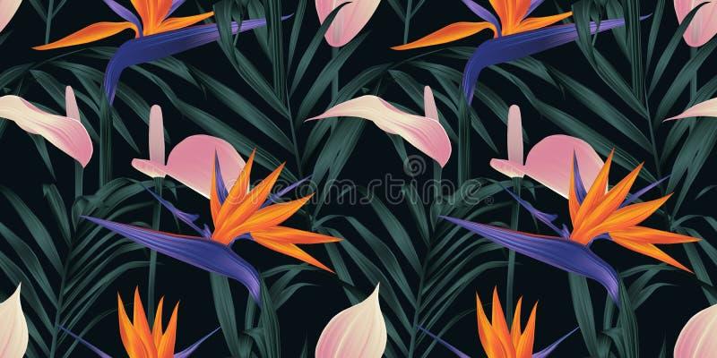 Naadloos patroon, tropische installaties, Paradijsvogel bloem, roze Anthurium en palmbladen op zwarte achtergrond vector illustratie