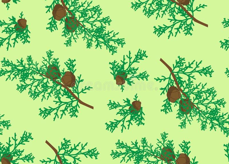Naadloos patroon van cipres royalty-vrije illustratie