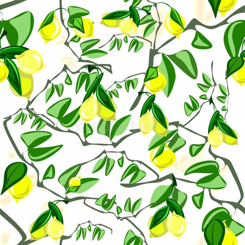 Naadloos patroon van citrusvruchtencitroen, de zomerthema Heldere citroenen stock illustratie