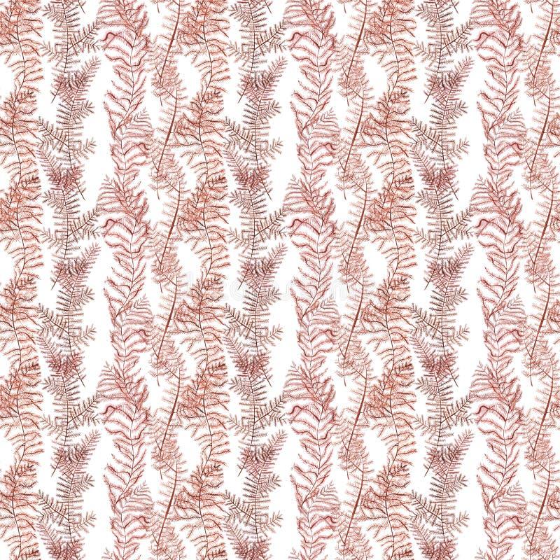 Naadloos patroon van de rode illustratie van de koralenwaterverf Hand getrokken schets voor ontwerp Onderwaterwaterverfachtergron stock illustratie