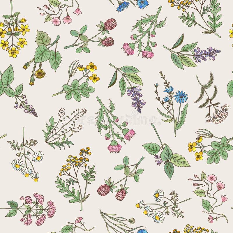 Naadloos patroon van diverse hand getrokken kruiden en bloemen vector illustratie