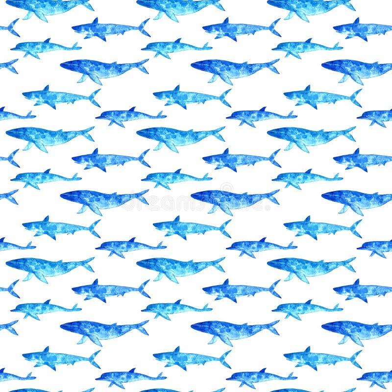 Naadloos patroon van een walvis, een dolfijn en een haai vector illustratie