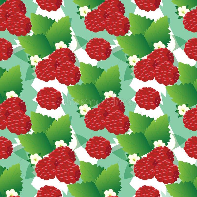Naadloos patroon van frambozenbessen op takken met bladeren en bloemen stock illustratie