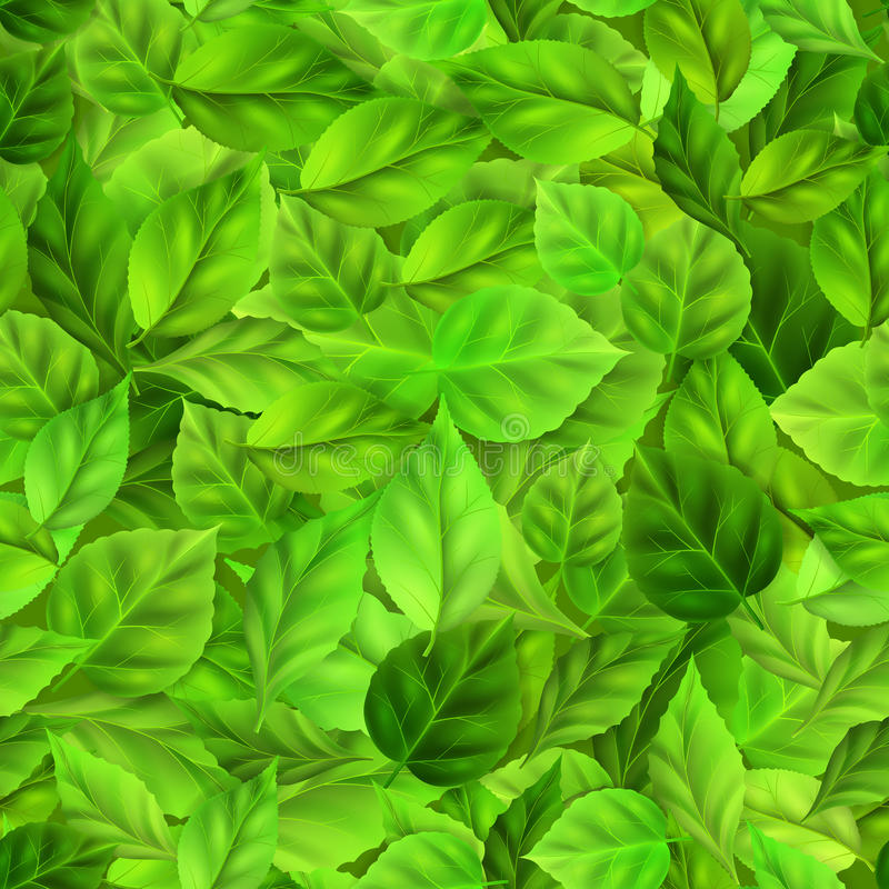 Naadloos patroon van groene bladeren stock illustratie