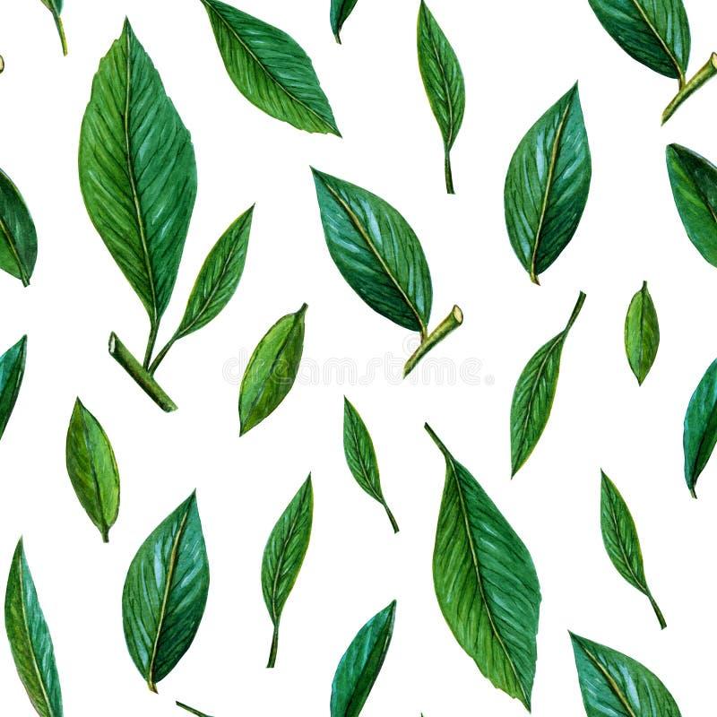 Naadloos patroon van groene bladeren E r geschilderd stock illustratie