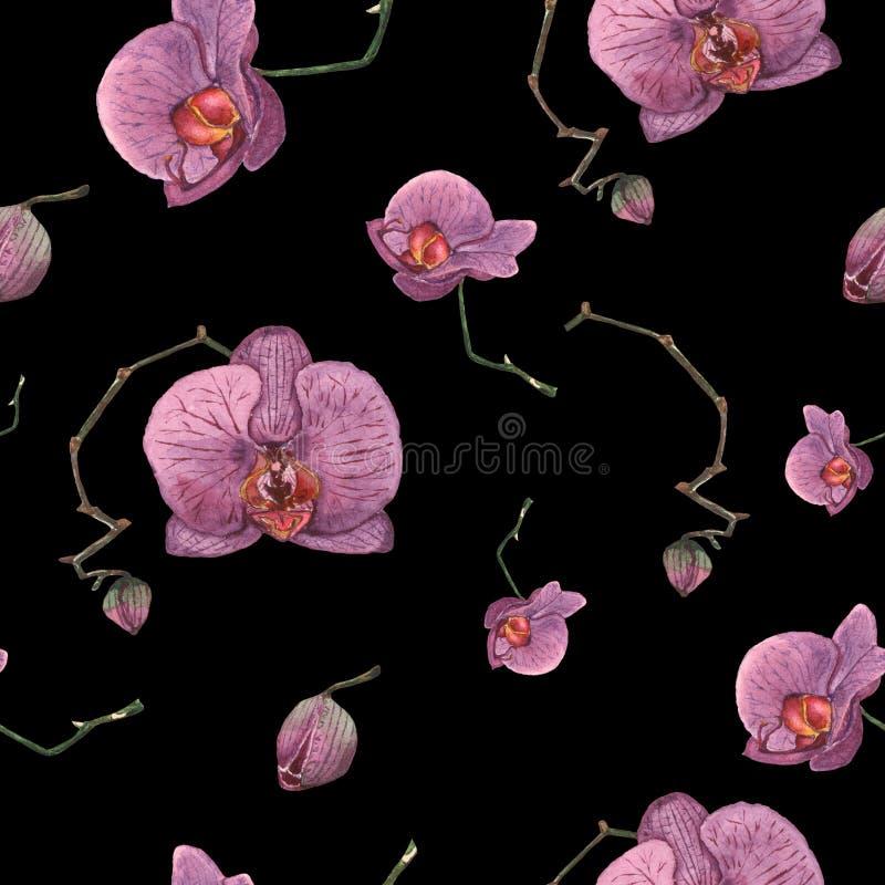 Naadloos patroon van hand getrokken waterverf purpere orchideeën op vector illustratie