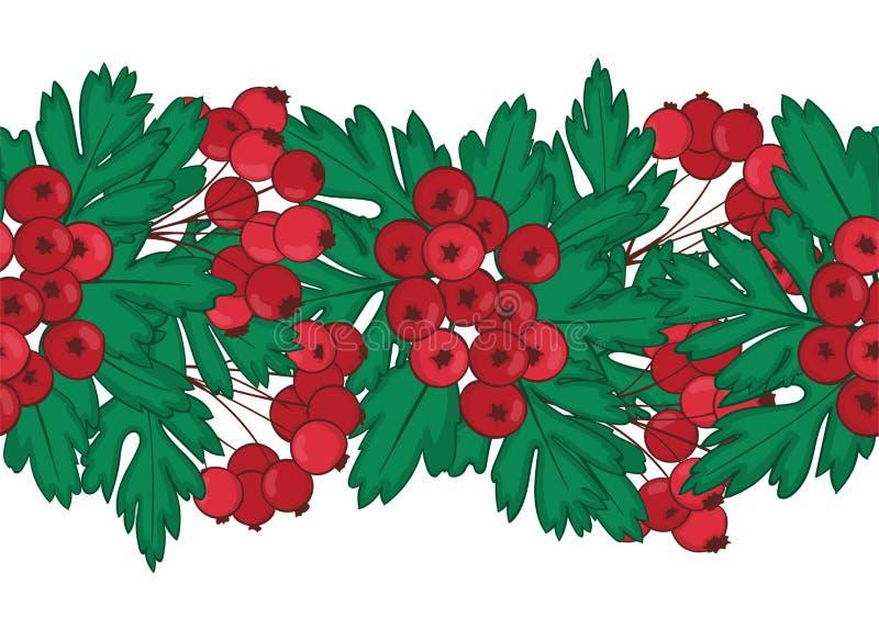 Naadloos patroon van rode haagdoornbessen eindeloze ornamentclusters van Crataegus of Hagedoorn royalty-vrije illustratie