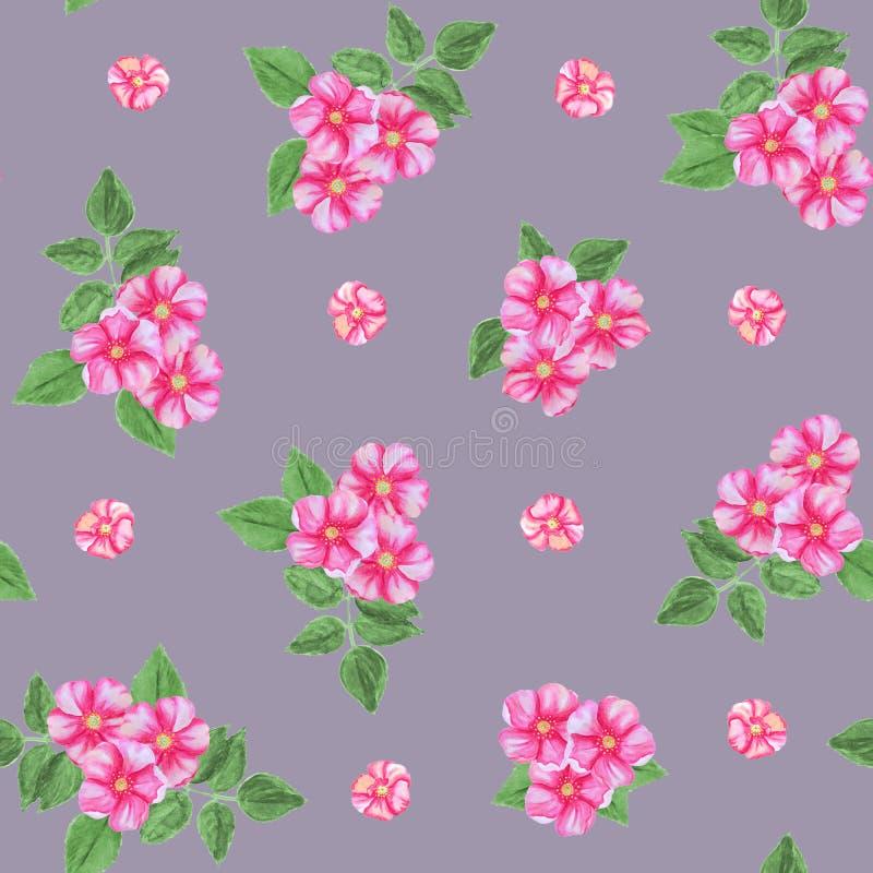 Naadloos patroon van roze rozebottelbloemen dat op een grijze achtergrond wordt geïsoleerd vector illustratie