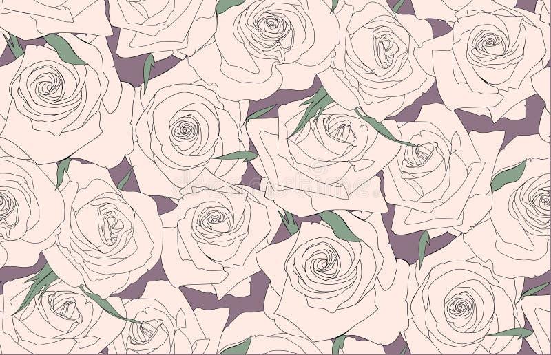 Naadloos patroon van rozen Knoppen van rozen stock illustratie