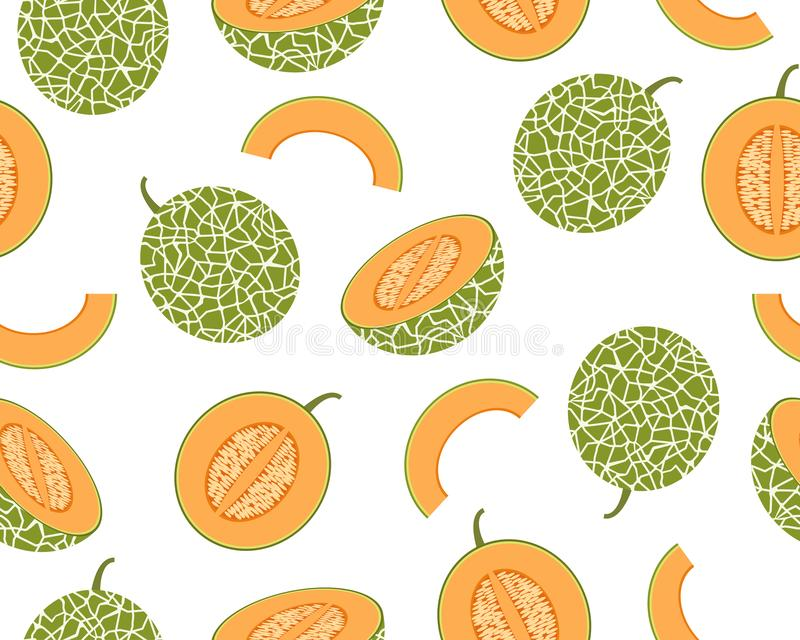 Naadloos patroon van verse die kantaloepmeloen op witte achtergrond wordt geïsoleerd stock fotografie