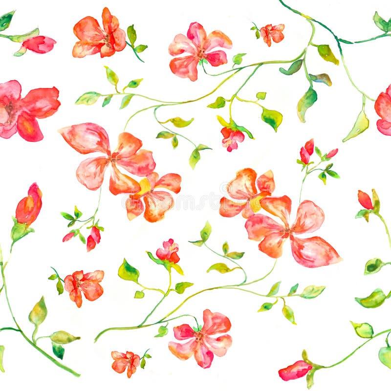 Naadloos patroon van waterverf met de hand gemaakte illustratie van rode bloemen vector illustratie