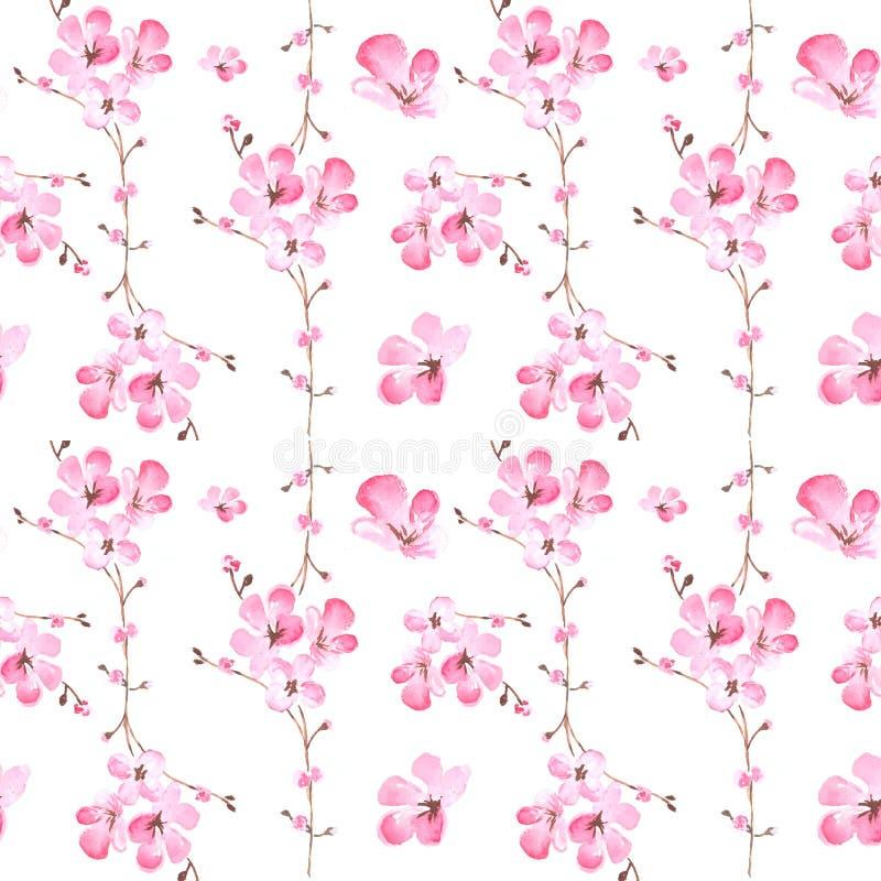 Naadloos patroon van waterverfillustratie van roze sakurabloesems vector illustratie