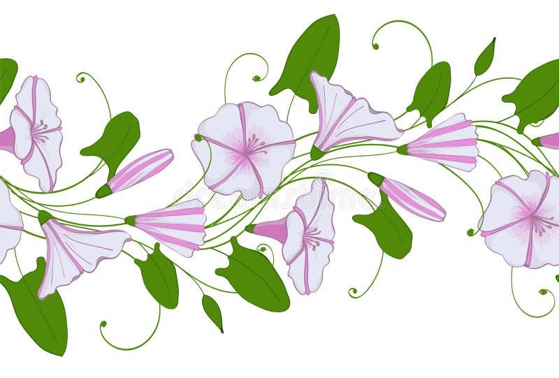 Naadloos patroon van witte en roze winde Slinger met windebloemen Ochtend-glorie teder ornament royalty-vrije illustratie