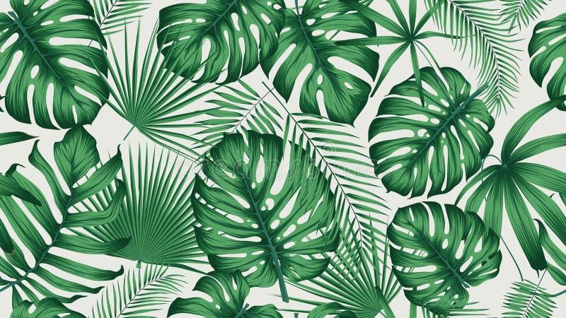 In naadloos tropisch patroon met exotische bladeren en installatieswildernis vector illustratie