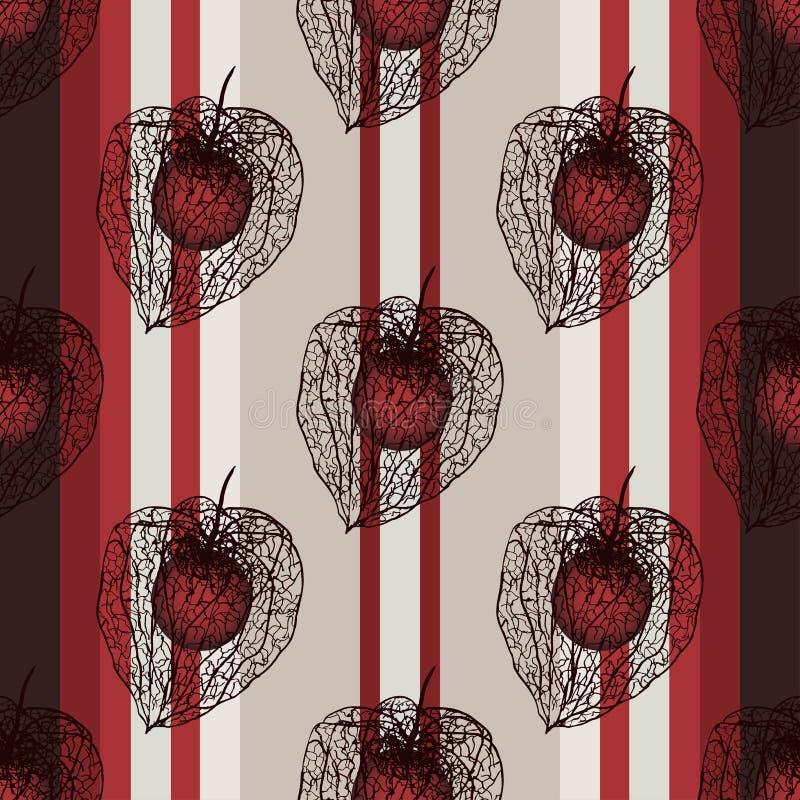 Naadloos verticaal patroon met physaliszaad stock illustratie