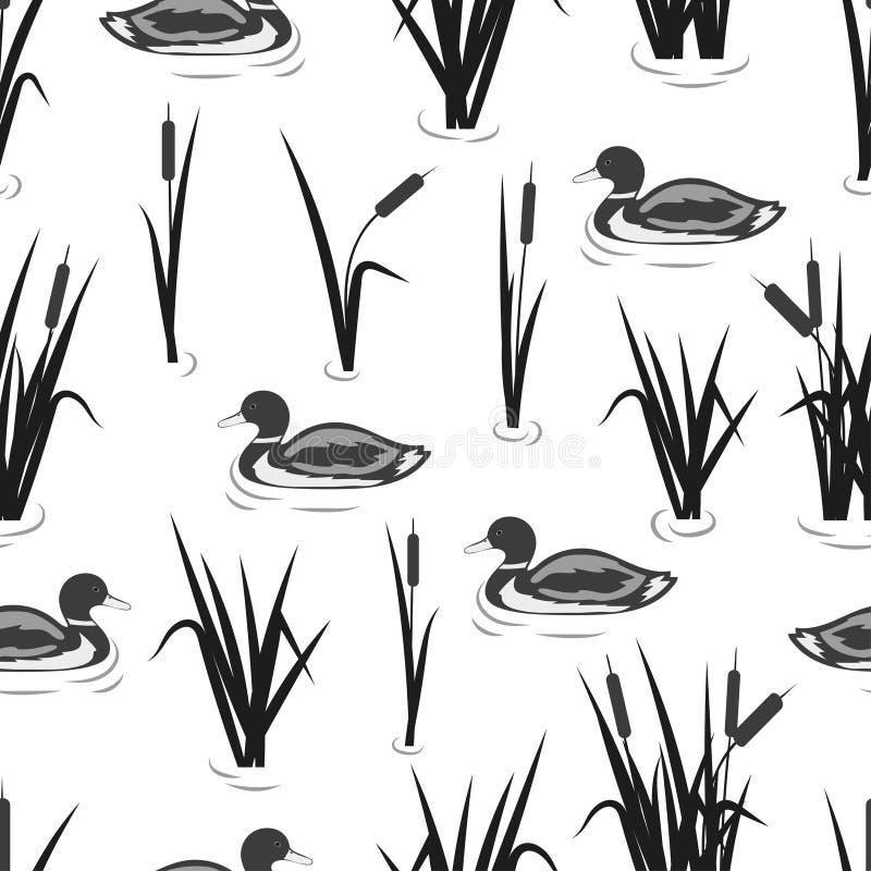 Naadloos vijverpatroon met riet en eenden Vector zwart-witte achtergrond vector illustratie