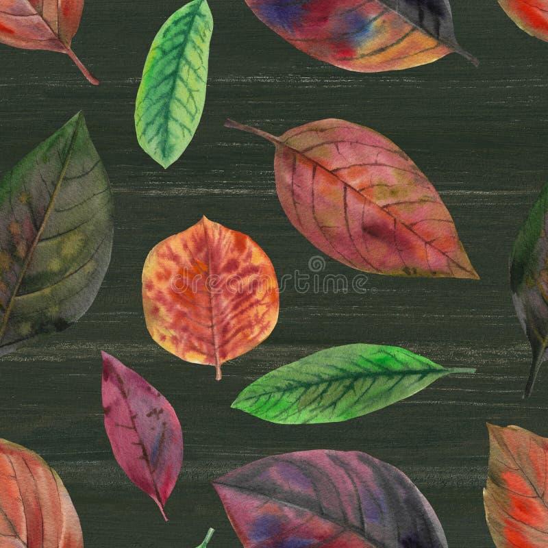 Naadloos waterverfpatroon Hand geschilderde waterverfillustratie Naadloos botanisch waterverf exotisch bloemenpatroon Naadloos w stock illustratie