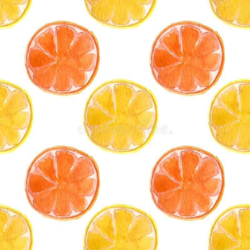 Naadloos waterverfpatroon met sinaasappelen en stock illustratie