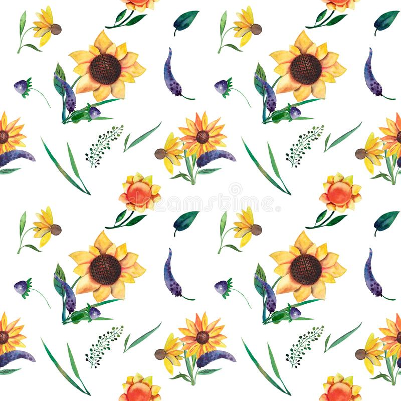 Naadloos waterverfpatroon op witte achtergrond Zonnebloemen, bladeren en wilde kruiden stock illustratie
