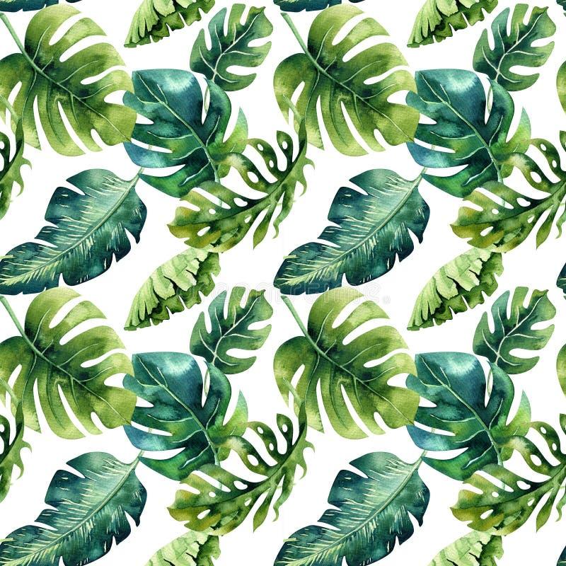 Naadloos waterverfpatroon van tropische bladeren, dichte wildernis Ha stock illustratie