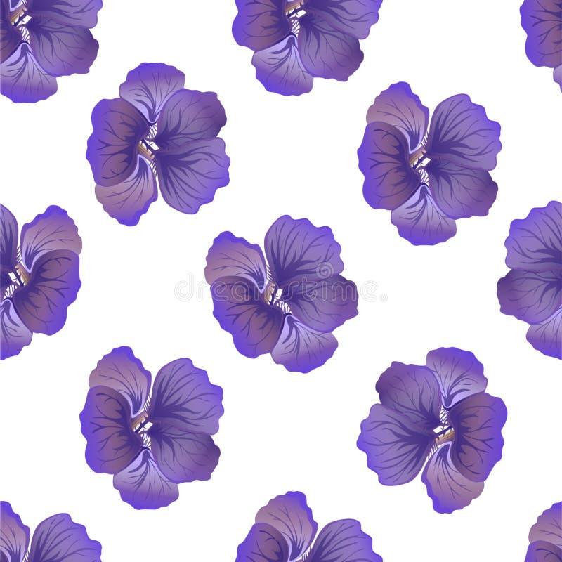 Naadloos wild bloemenpatroon met Oostindische kers Purpere hibiscusbloemen op witte achtergrond de botanische Motieven verspreidd royalty-vrije illustratie