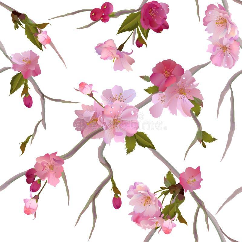 Naadloze achtergrond met zachte sakurabloemen stock illustratie