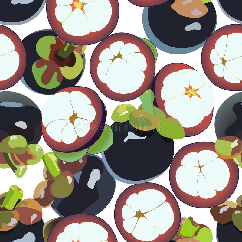 Naadloze achtergrond van de mangostan de vectorkunst vector illustratie