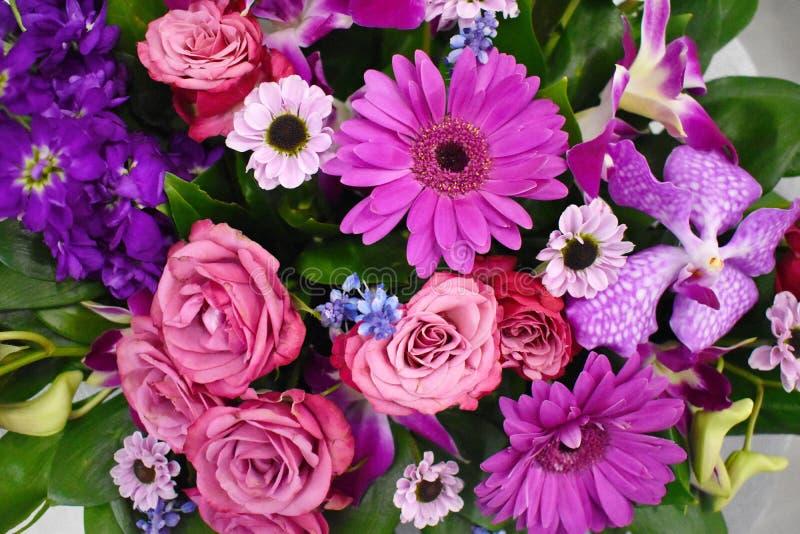 Naadloze achtergrond van kleurrijke bloemen royalty-vrije stock afbeelding