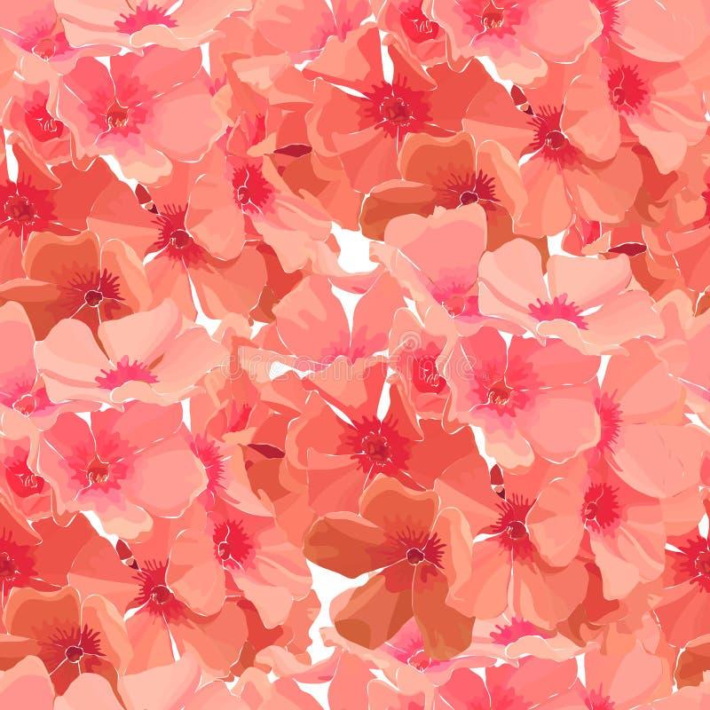 Naadloze achtergrond van roze flox vector illustratie