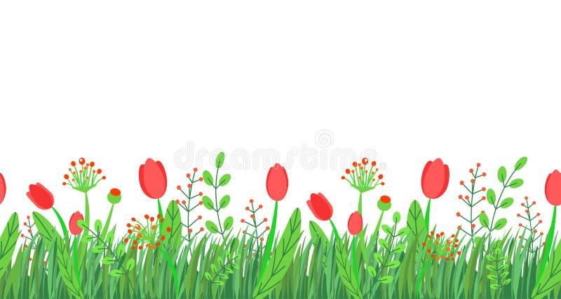 Naadloze de grensvector van het de lentegras met bloemen voor Pasen-malplaatjes Het bloemenelement van de de aardinstallatie van  royalty-vrije illustratie