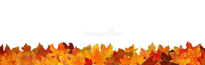 Naadloze de herfstbladeren stock foto