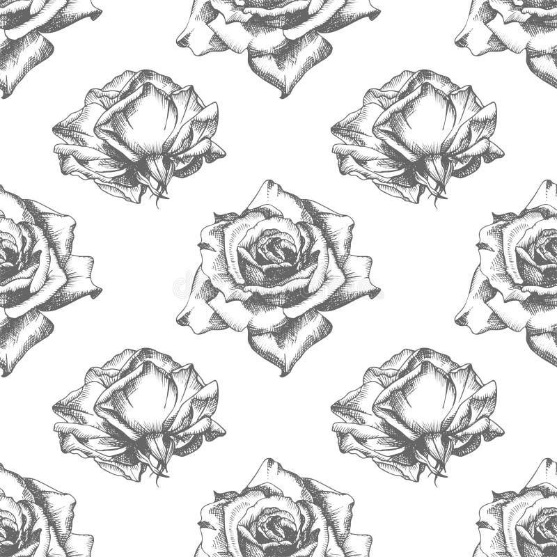 Naadloze Gedetailleerde uitstekende botanische illuatration van de patroonhand getrokken schets rozen Bloemen frame Zwart silhoue vector illustratie