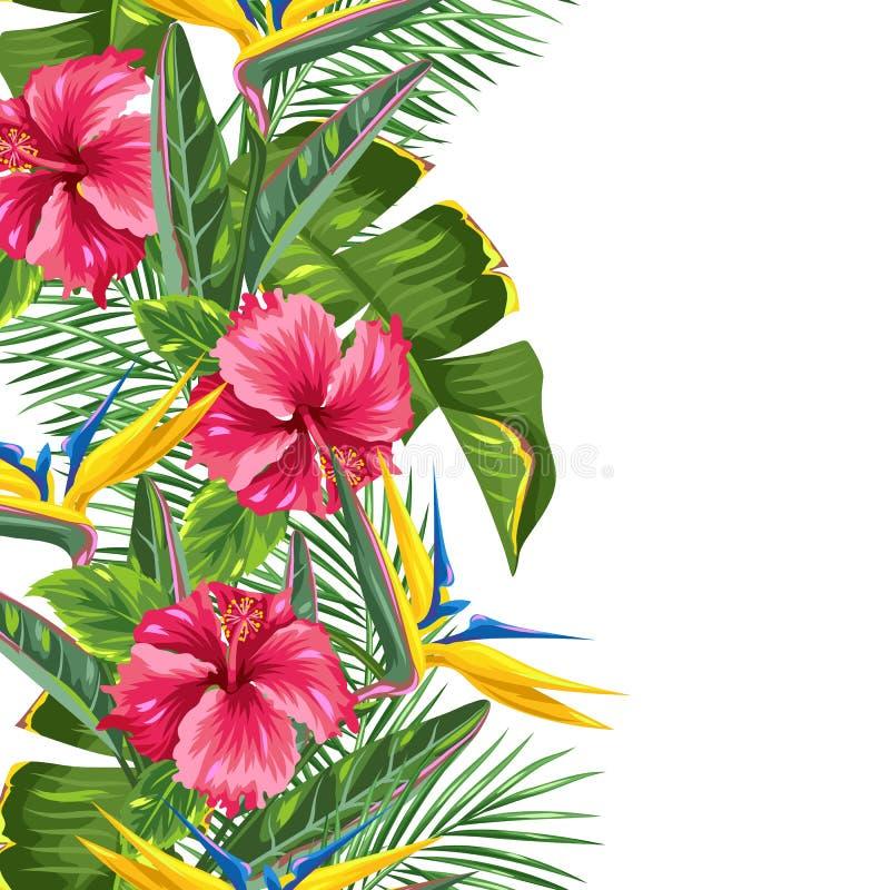 Naadloze grens met tropische bladeren en bloemen Palmentakken, paradijsvogel bloem, hibiscus vector illustratie