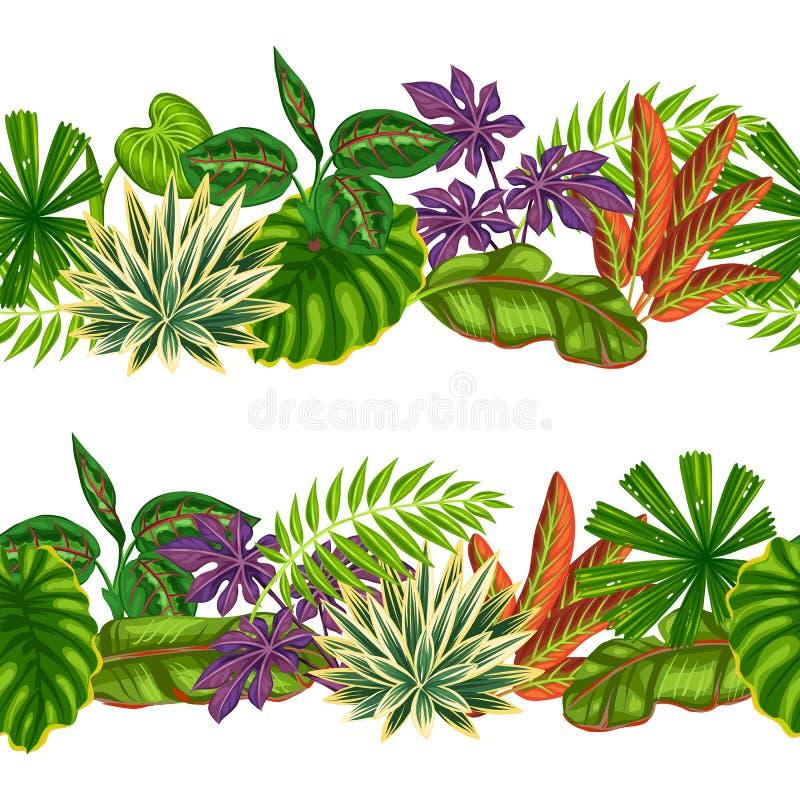 Naadloze grenzen met tropische installaties en bladeren Achtergrond zonder masker wordt gemaakt te knippen dat Makkelijk te gebru vector illustratie