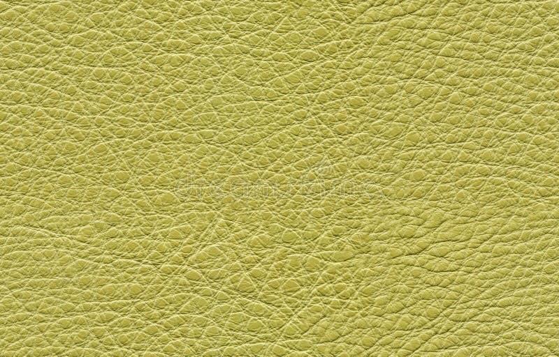 Naadloze groene leertextuur royalty-vrije stock fotografie