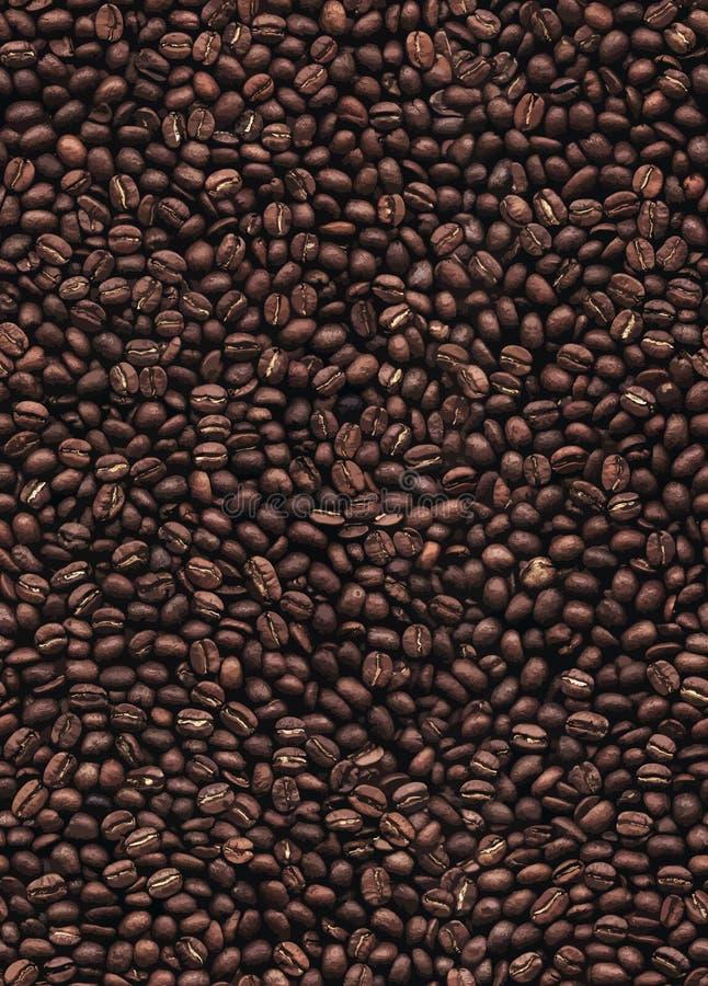 Naadloze het patroonachtergrond van koffiebonen vector illustratie