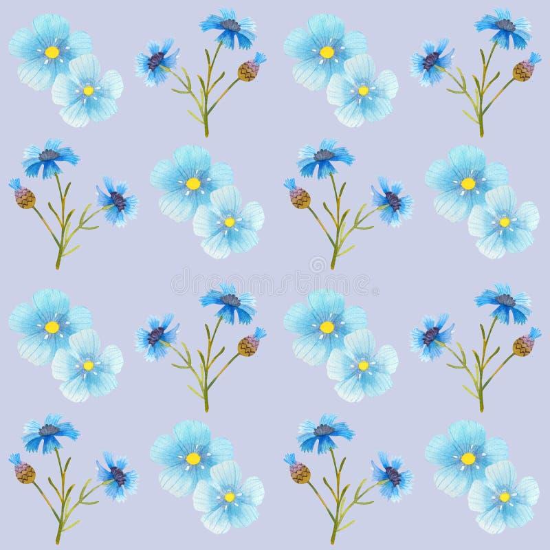 Naadloze illustratie van de het patroonwaterverf van korenbloem de blauwe bloemen stock illustratie