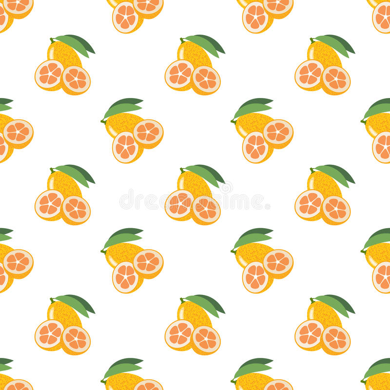 Naadloze kumquat van het achtergrond kleurrijke tropische fruit stock illustratie