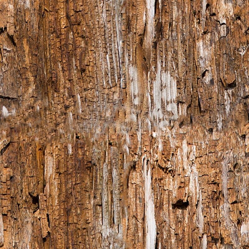 Naadloze oude houten textuur stock fotografie