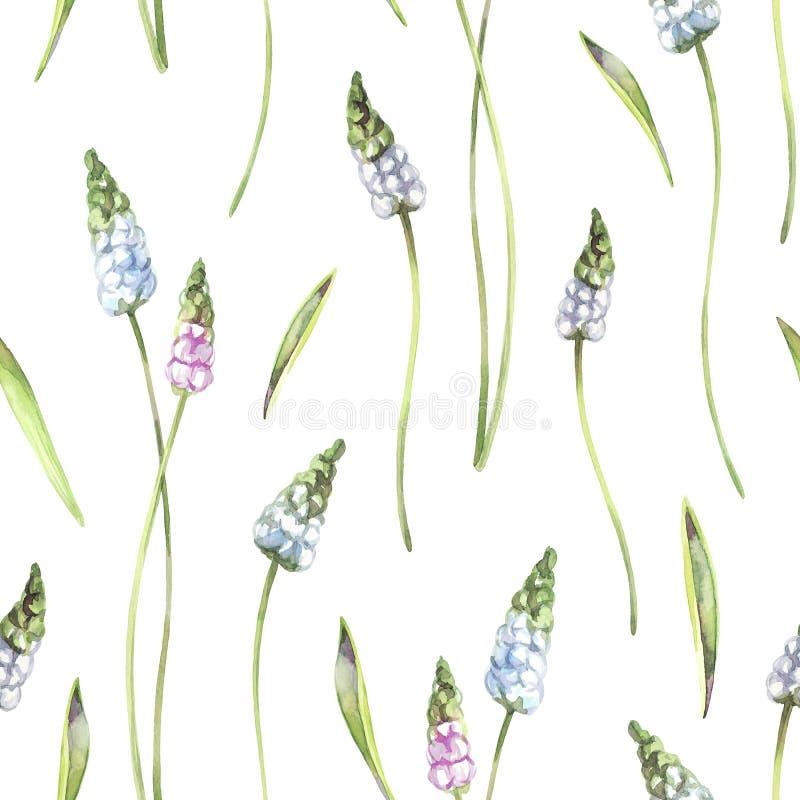 Naadloze patroon gevoelige bloemen en installaties De zomer en de lentewaterverfillustratie Botanische textuur Elegant royalty-vrije illustratie
