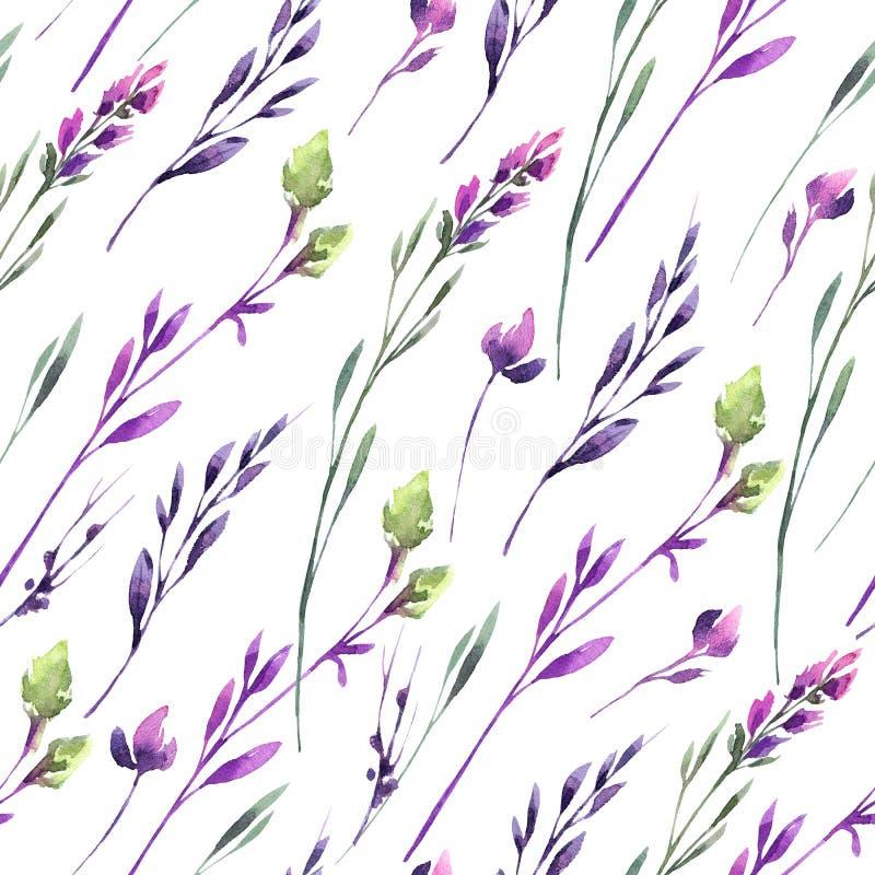 Naadloze patroon gevoelige bloemen en installaties De zomer en de lentewaterverfillustratie Botanische textuur in viooltje royalty-vrije illustratie