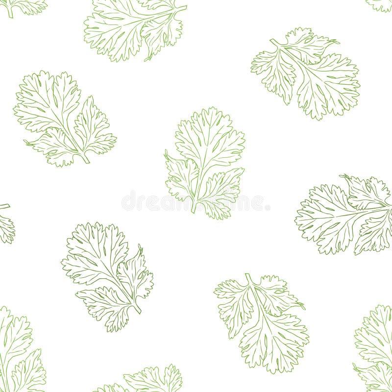 Naadloze patroon van de koriander het vectorhand getrokken illustratie vector illustratie