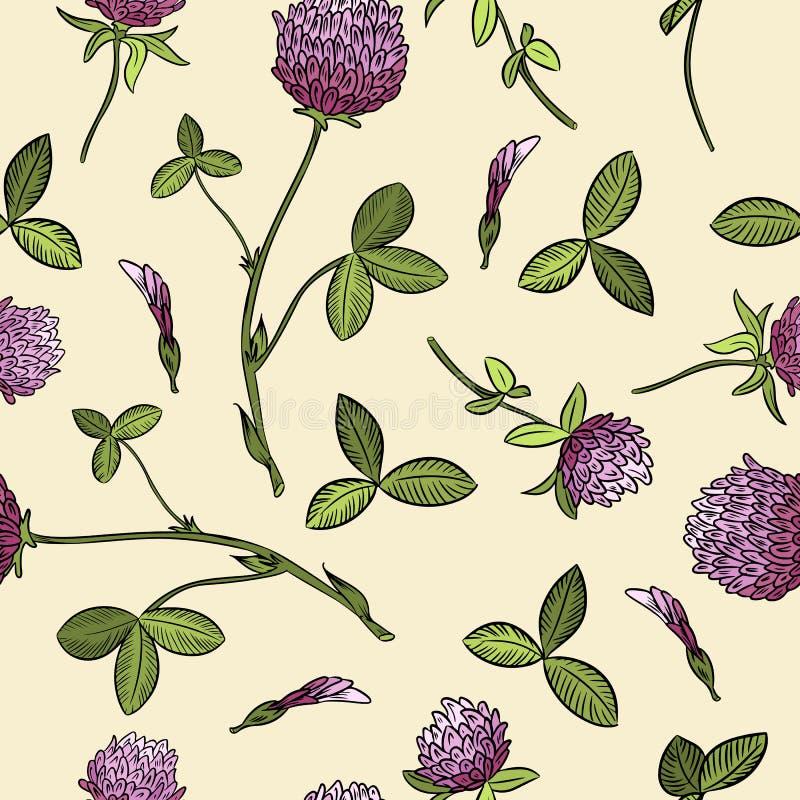Naadloze patroon van rode klaver het botanische boho Vector beeld royalty-vrije illustratie