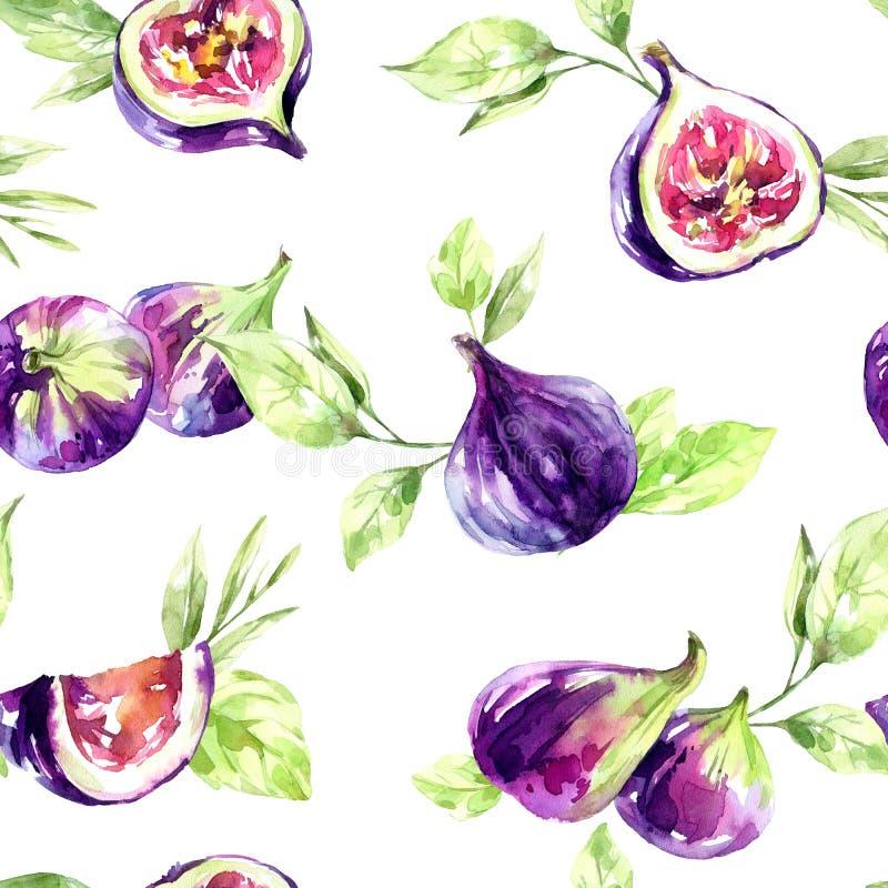 Naadloze patroonfig. en bladeren De zomer en de lentewaterverfillustratie Vruchten textuur in violette schaduwen Vers en royalty-vrije illustratie