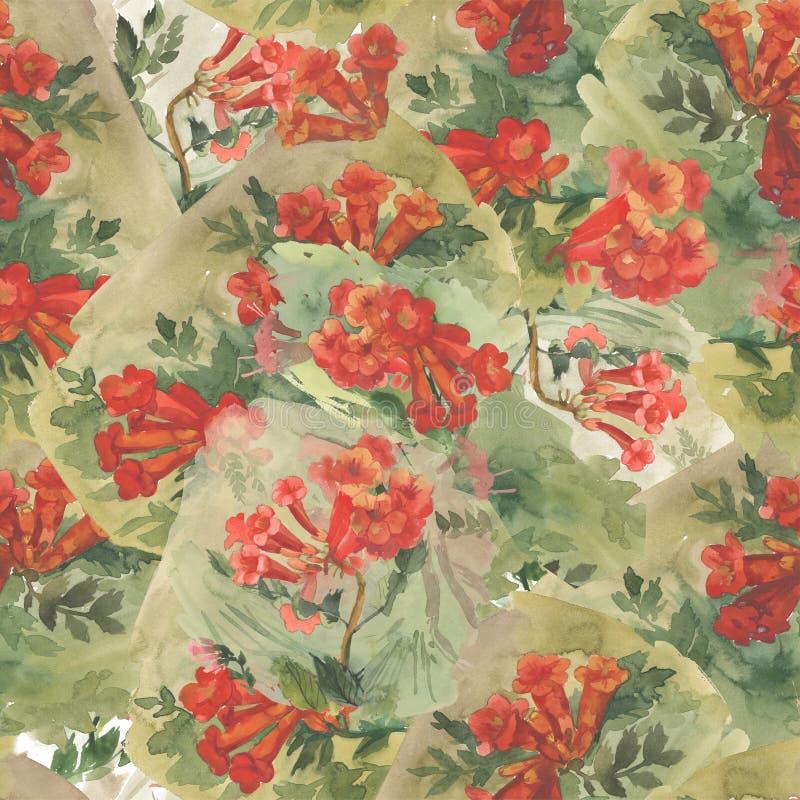 Naadloze patroonillustratie met rode kamsisbloem op witte achtergrond vector illustratie