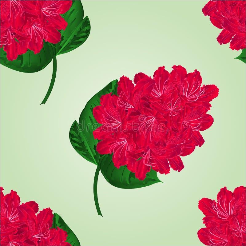 Naadloze rode de rododendronvector van het textuurtakje vector illustratie