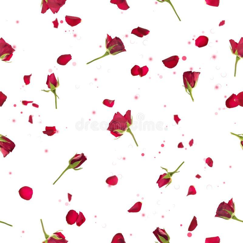Naadloze rozen en bloemblaadjes in rood stock afbeelding