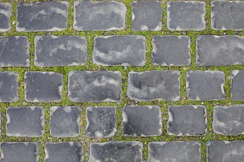 Naadloze textuur van een straatsteenspoor op een groen gras baku azerbaijan in de winter Oude Stad stock foto's